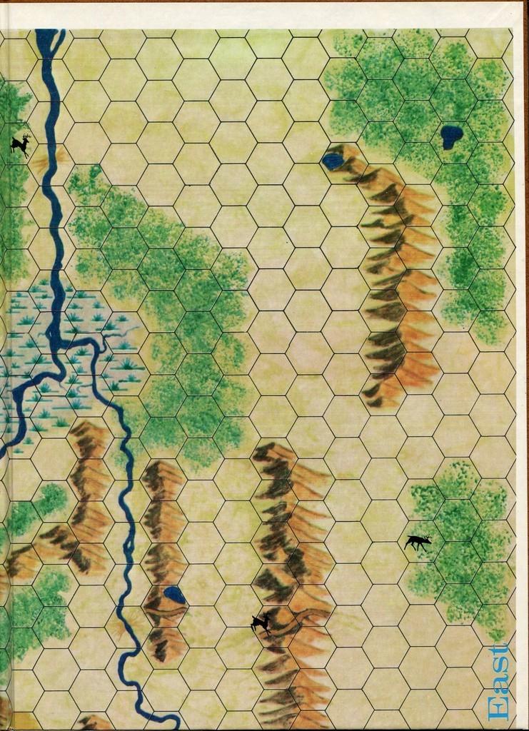 carte divisée en zones hexagonales